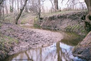 a winding stream