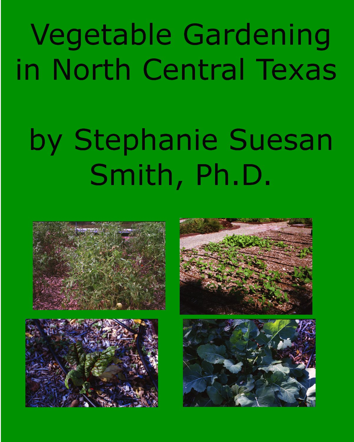 Growing Vegetables in North Central Texas cover