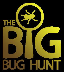 BigBugHunt logo